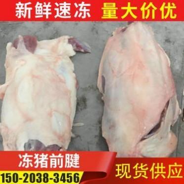厂家供应冻猪前后腱子肉 新鲜冷冻猪前腱子肉 冻猪肉分割产品批