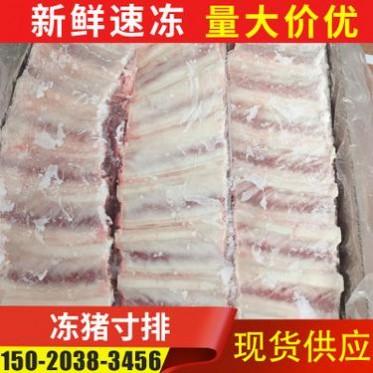 厂家批发冻猪寸排 速冻猪肉肋排供应 新鲜冷冻猪排骨加工