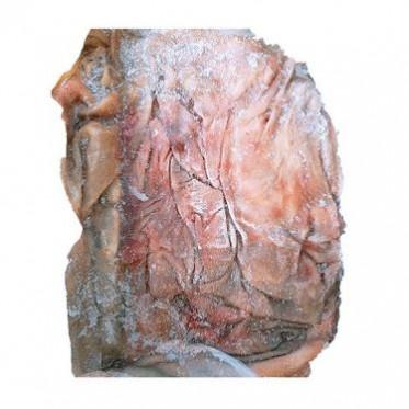 新鲜驴皮生驴皮农家自养 长期供应优良驴皮 优良食品驴皮农产品